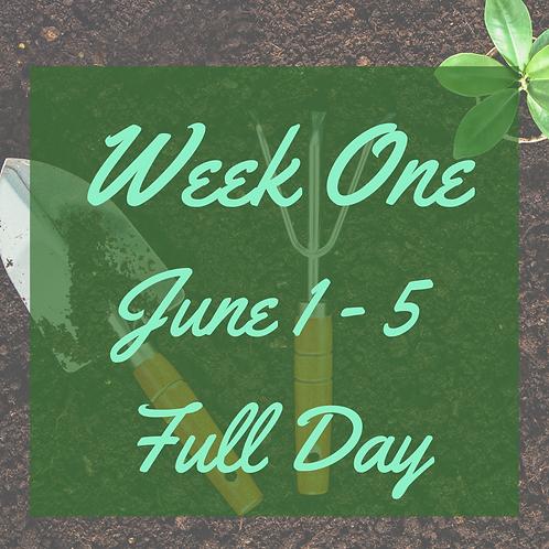 Full Day Camp - Week 1
