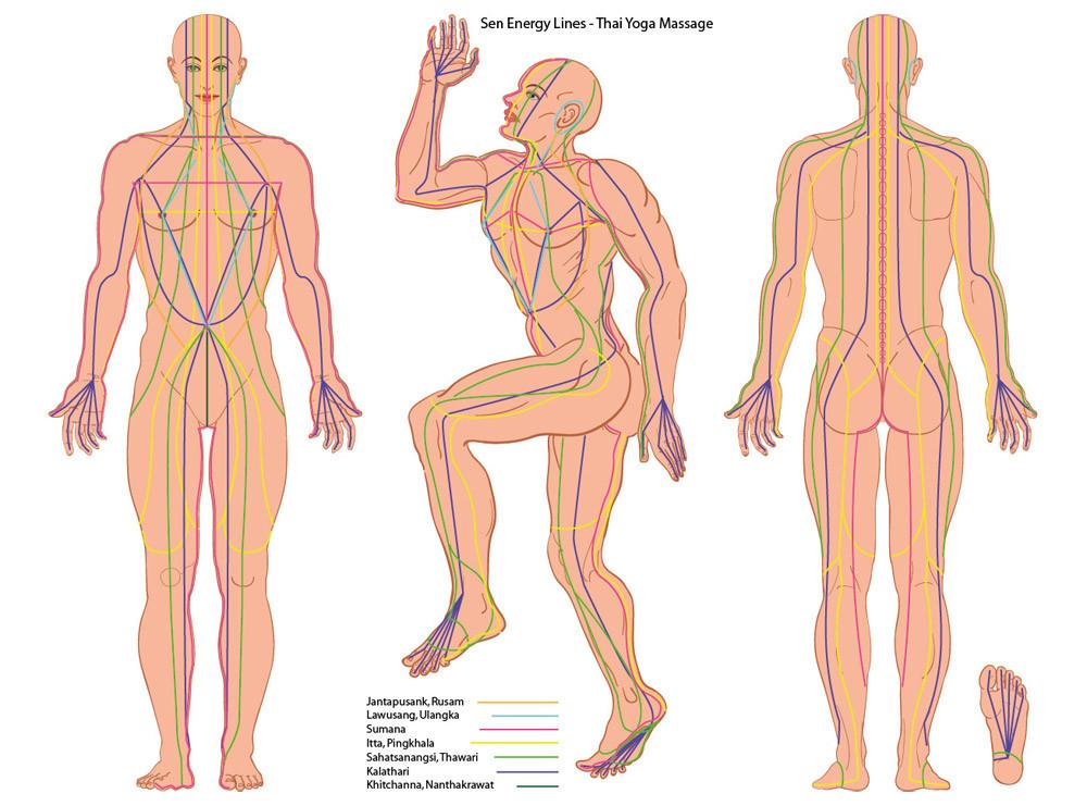 Sen Lines Thai Yoga Massage