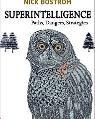 Superintelligence, High and AI