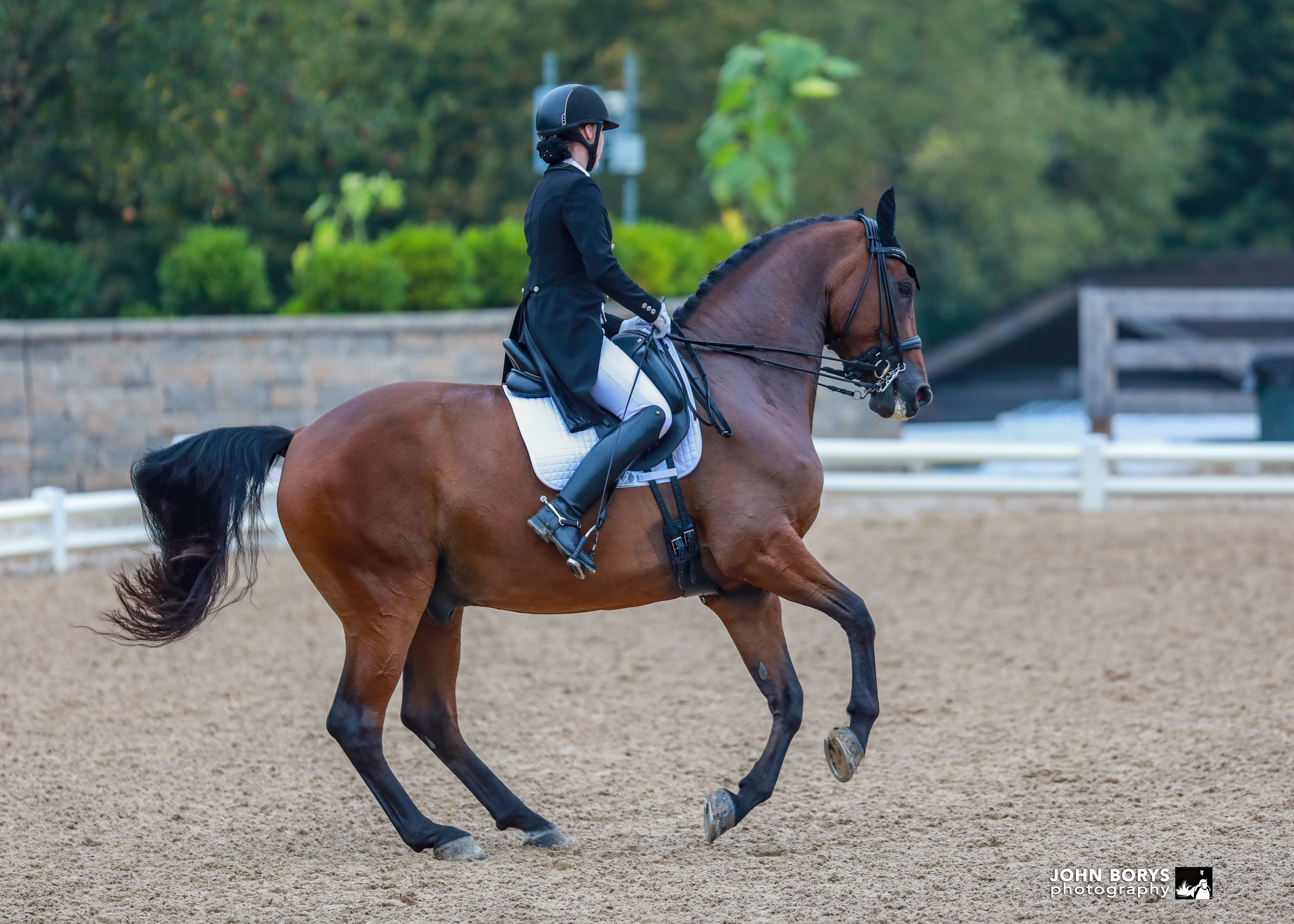 Brianna Zwilling Dressage Training