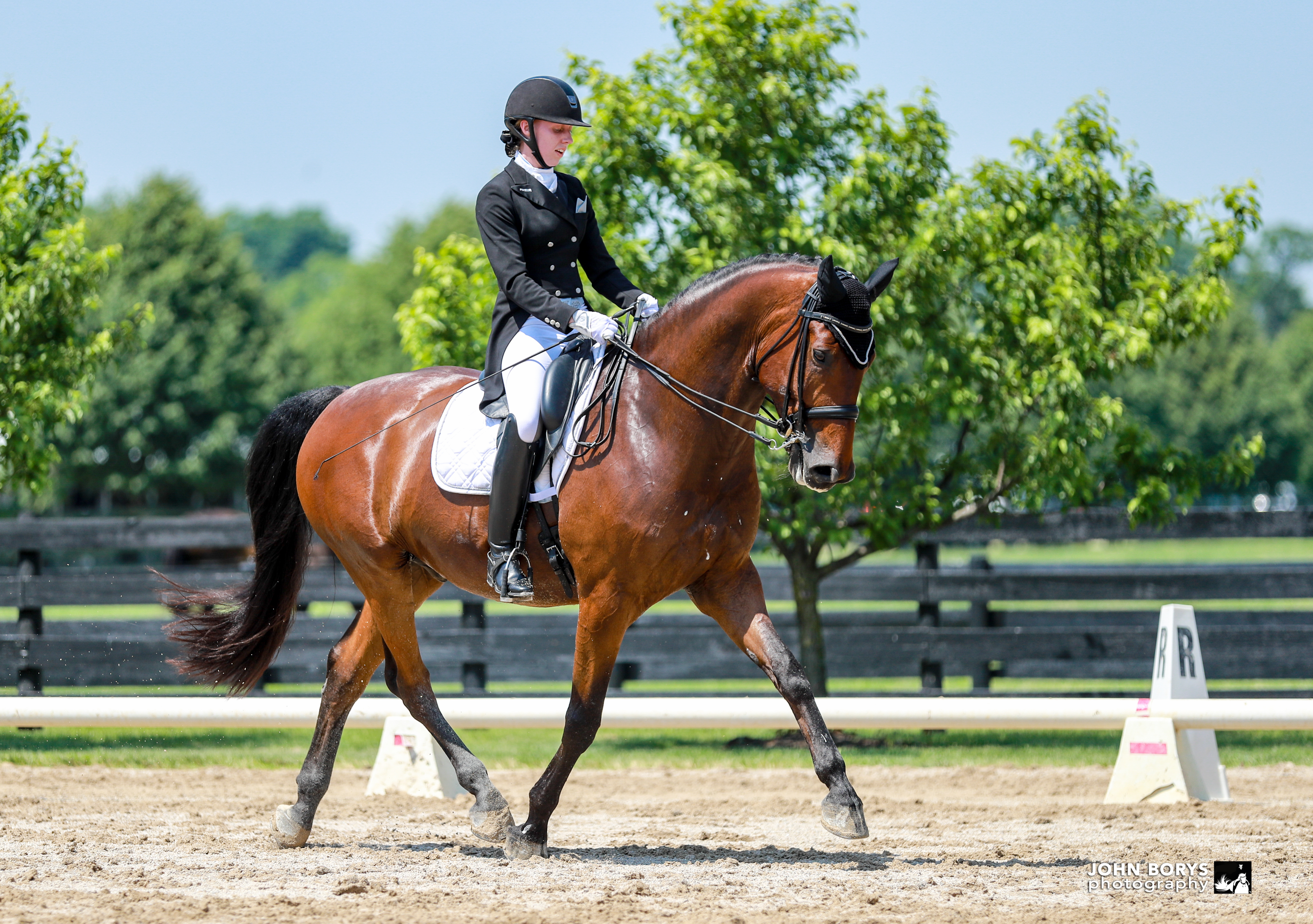 Brianna Zwilling Dressage Lessons
