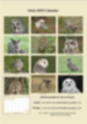 14 A4 Owls Calendar 2020 (cream).jpg