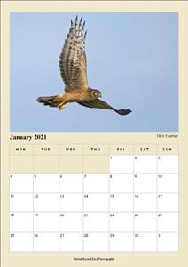 A4 January.jpg