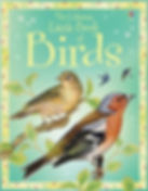 Little Book of Birds.jpg
