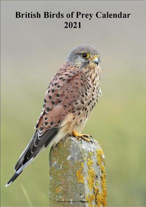 A4 Birds of Prey Calendar 2021 (cream).j