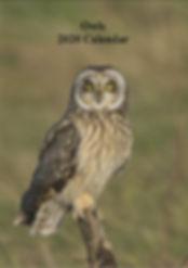 13 A4 Owls Calendar 2020 (cream).jpg