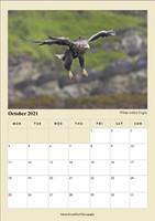 A4 October.jpg