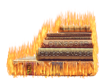 Modern Day Book Burning