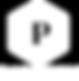 logo_Groupe_Partson_Final_Blanc.png