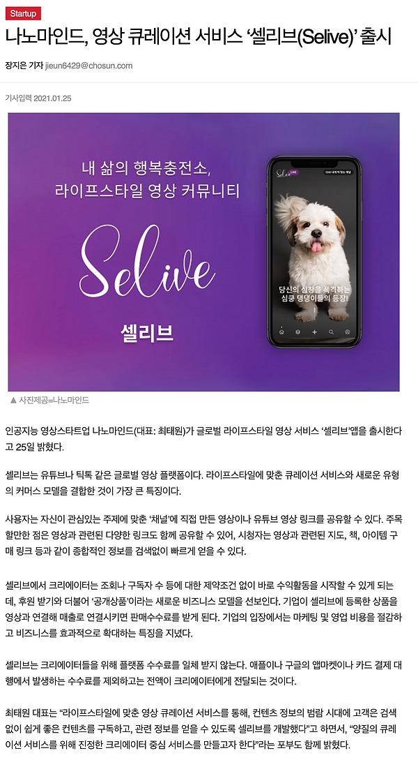조선일보 기사 전체.png