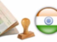 виза в индию для иностранных граждан