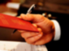 деловая виза / бизнес виза