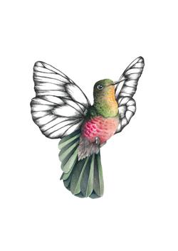 Flutterhum