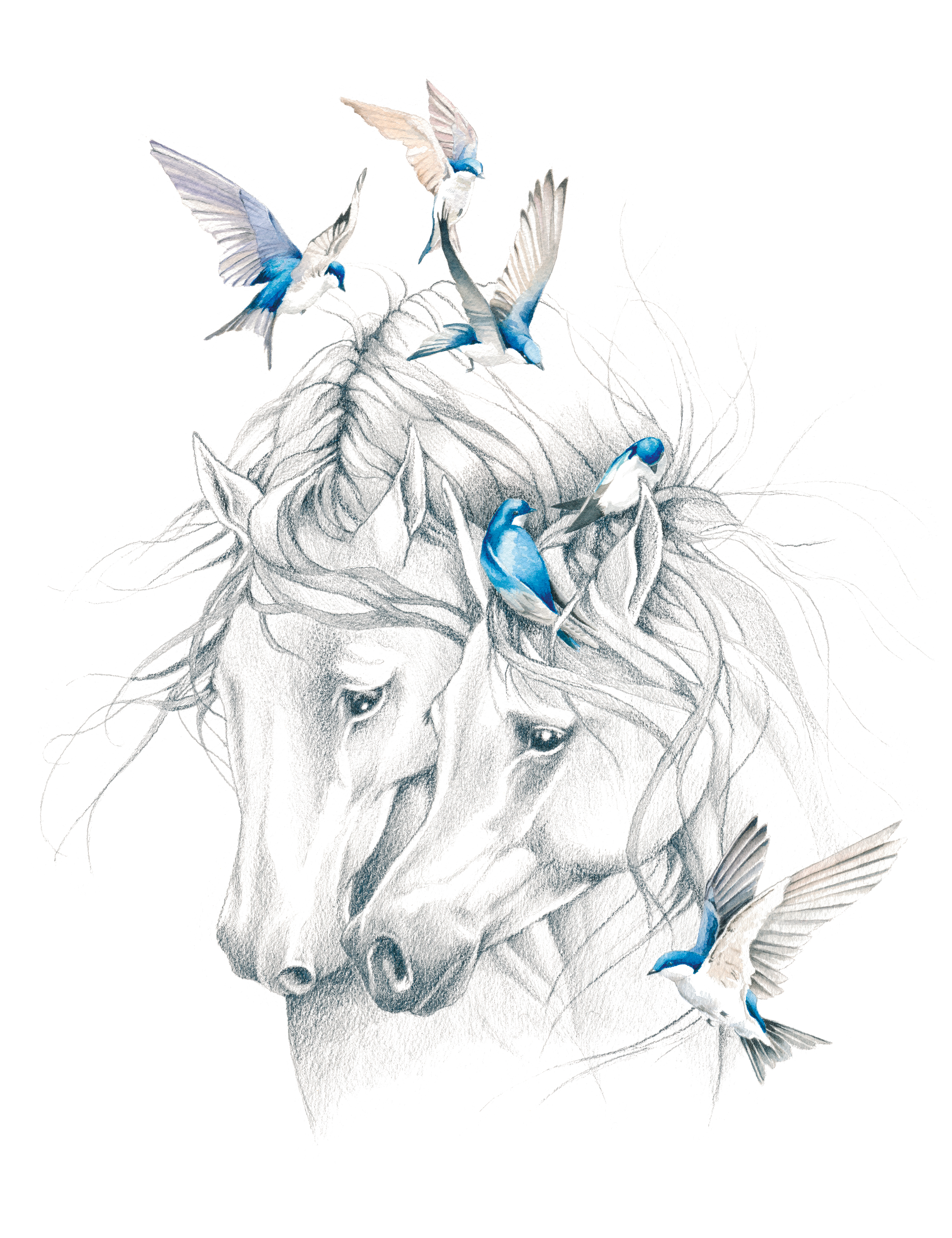 Horses and Swallows