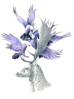 Deer and Crows