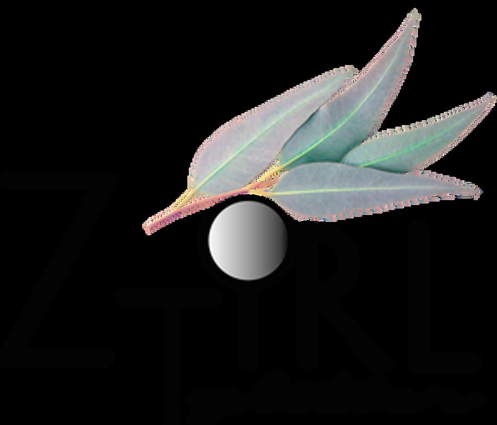 ZTiRL Glitter logo