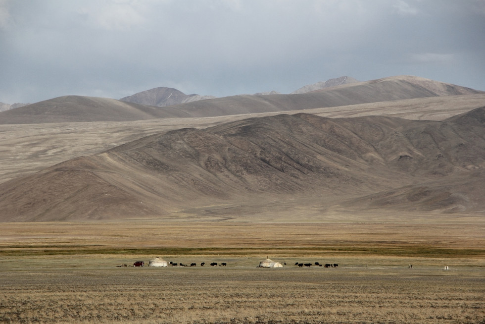 2017. gada 24. augusts. Tadžikistāna, Pamira lielceļš no Horugas līdz Murgābai. Oranži murkšķi un tu