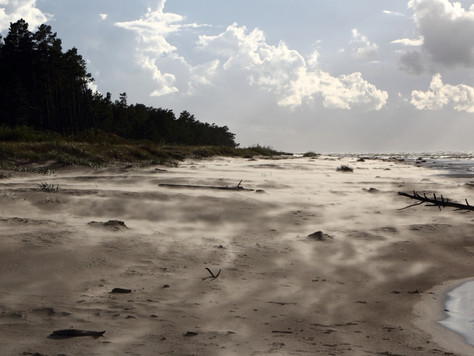 2018. gada 12. augusts. Latvija. Pārgājiens Ventspils – Kolka, 2. diena (ejam dabā #9)