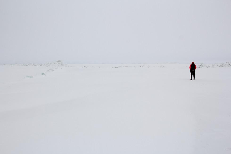 2019. gada 13. janvāris. Igaunija. 20 km pārgājiens pa un gar Peipusa ezeru Varnja – Alatskivi