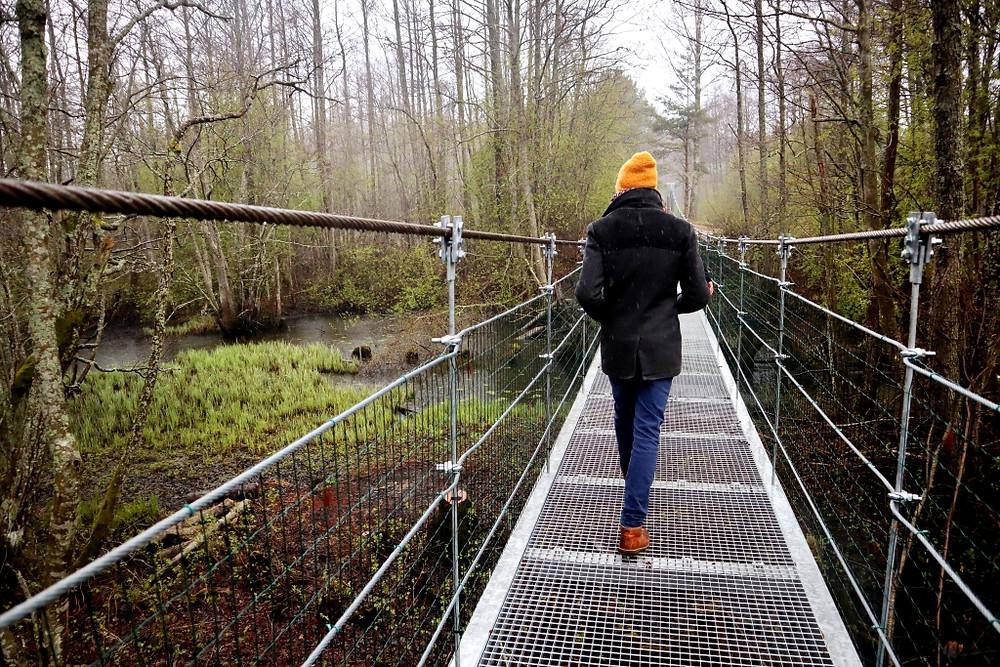 Trošu tilts pār Irbes upi