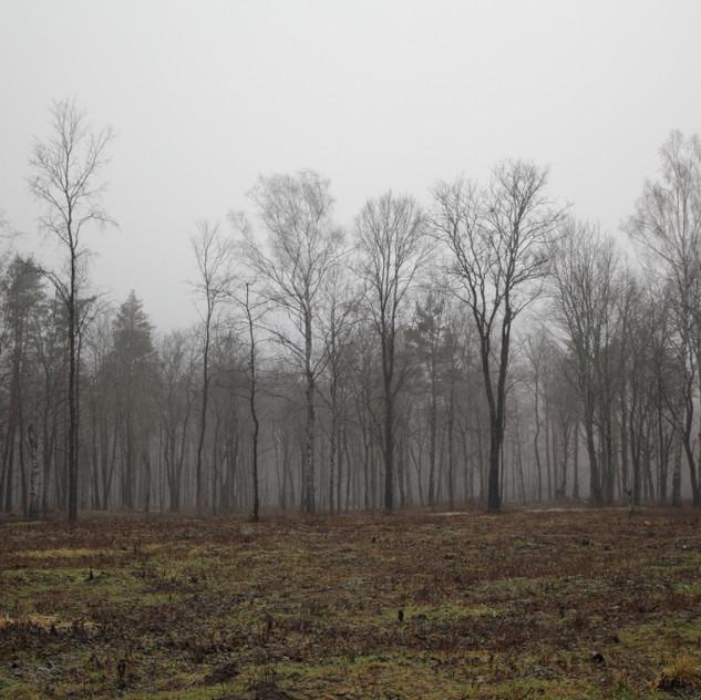 LATVIJA, GNP (foto S. Kaļva) (5)