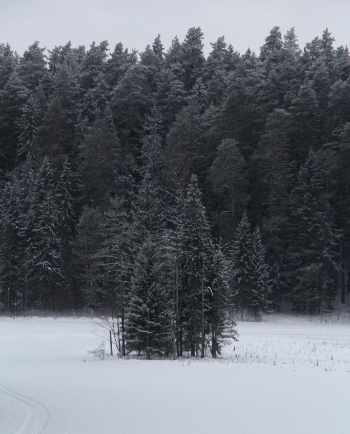 IGAUNIJA, STARP TAEVASKOJA&KIIDJÄRVE