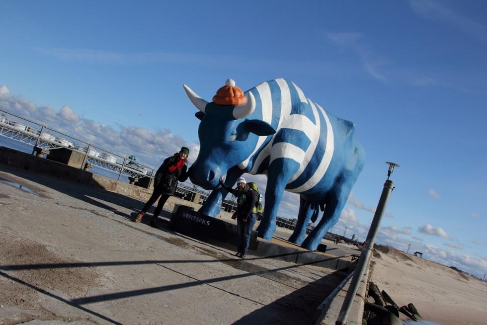 2017. gada 30. marts. Lisa Latvijā. Ventspils govis, kuģīši un vārtīšanās smiltīs