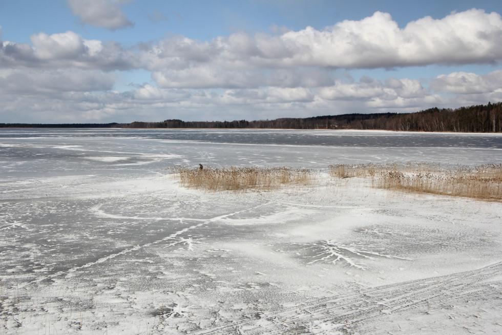 2018. gada 17. marts. Latvija, Dobeles novads. 25 km pārgājiens ap Zebrus ezeru (ejam dabā #3)