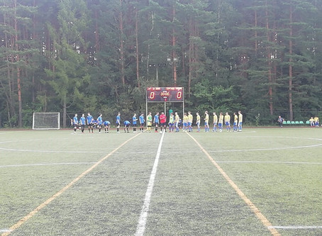 Первенство Московской области по футболу среди юношей первая группа А