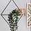 Thumbnail: Triangulo Colgante de Plantas