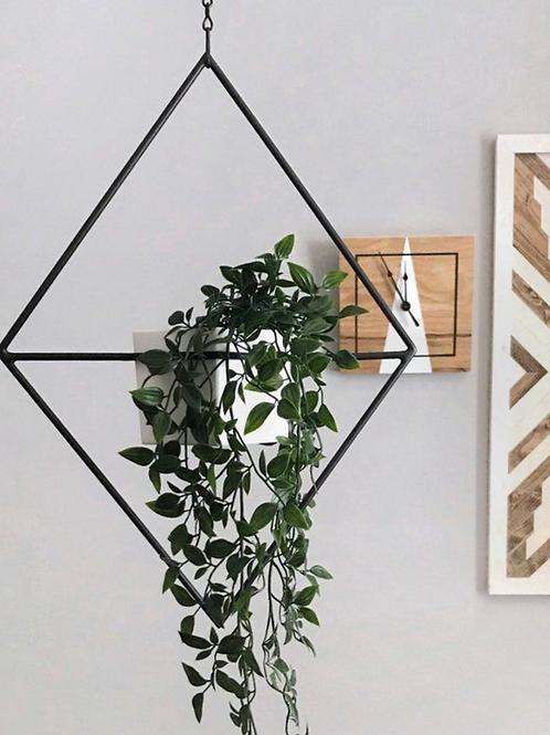 Triangulo Colgante de Plantas