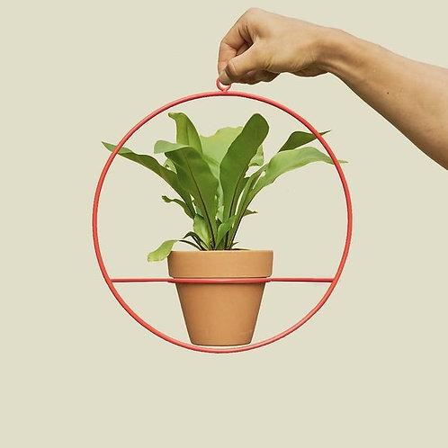 Aro Colgante para Plantas