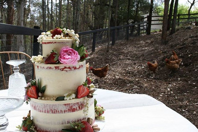 Birthday Party with the Chooks #birthday