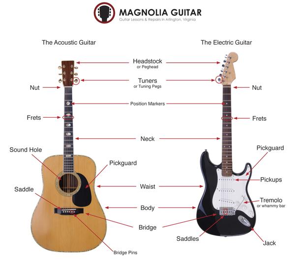 Guitar-Diagram.png