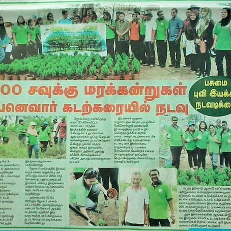 GES Planted 200 trees.