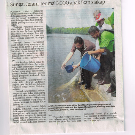 Ges Released 3000 Siakap Fish Fries at Sungai Pulai on 14th Oct 2014