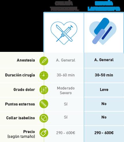 Cuadrante_1.png