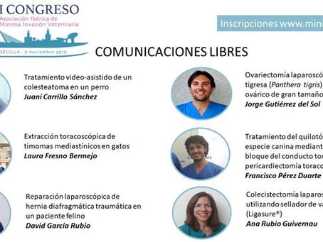 ANA RUBIO, PONENTE EN EL PRIMER CONGRESO DE CIRUGÍA DE MÍNIMA INVASIÓN VETERINARIA EN ESPAÑA