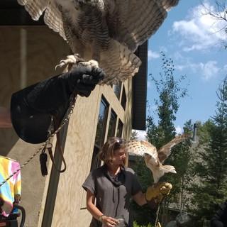 Bird Release at Achieve Today Coaching Retreat