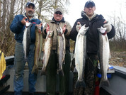 WINTER STEELHEAD NOVEMBER 2013.jpg