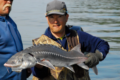 Ron Holt & Paul Ishi Astoria Sturgeon 20