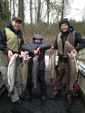 WINTER STEELHEAD JANUARY 2014 # 14 - Cop
