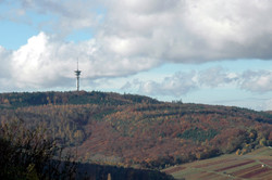Güglingen Stromberg mit Fernsehturm