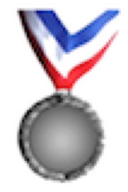 Silver Medal Sponsor