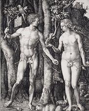 Albrecht Durer's Engraving of Adam and Eve