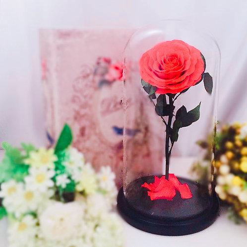 現貨 - [32cm] 韓式手工永生玫瑰花(鮮紅色)