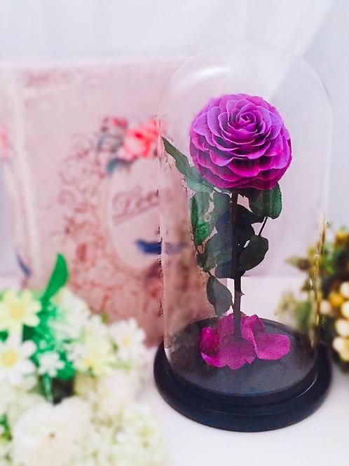 現貨- [32cm]韓式手工永久玫瑰花(紫色)