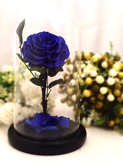 現貨 - [24cm] 韓式手工永生玫瑰花 (藍色)