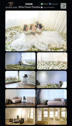 303.White Flower Paradise 白花仙境