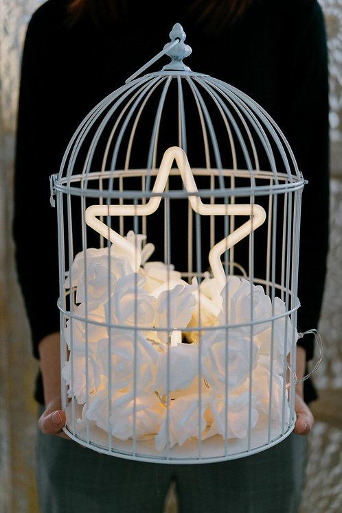 現貨 - 韓式鳥蘢·玫瑰花霓虹檯燈 (黃色星星)